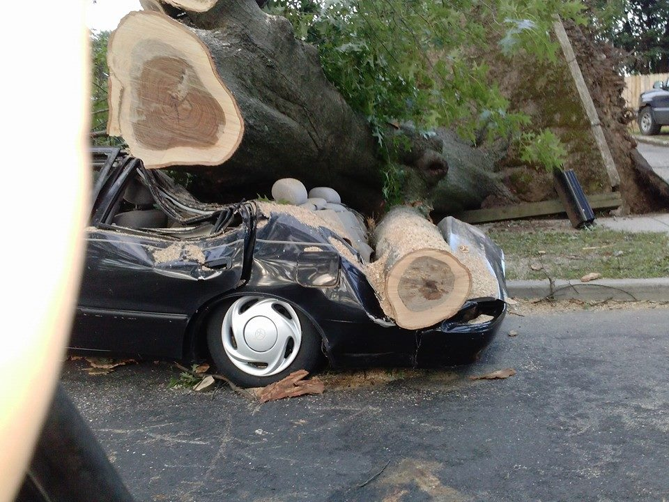Trees Fall on Homes, Damage Vehicles in Levittown
