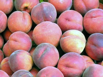 Bristol Hosting Peach Social, Tours of Grundy Museum