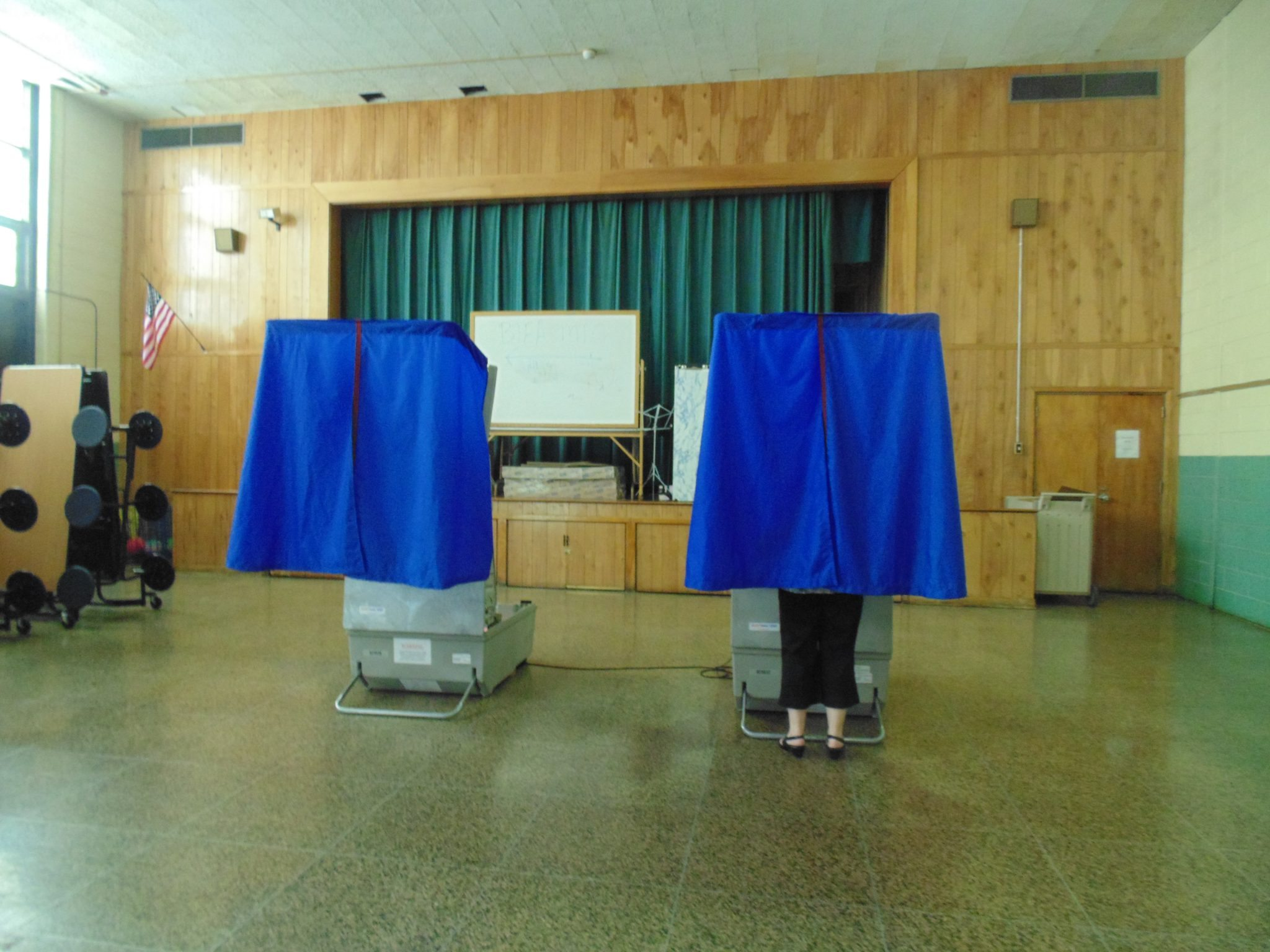 See Area Primary Election Results